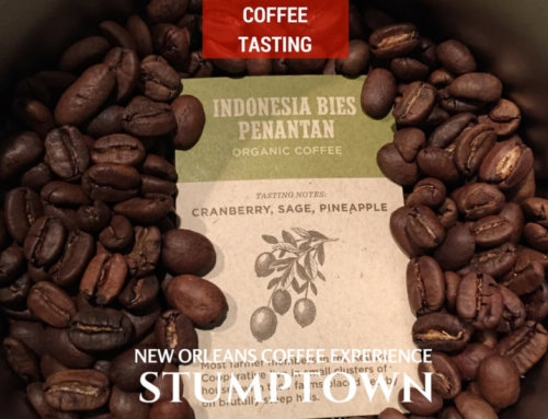 Stumptown Indonesia Bies Penantan Coffee Tasting