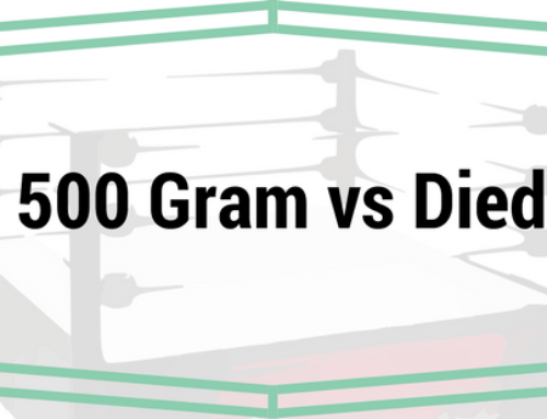 Mill City 500 Gram vs. Diedrich IR-1 Comparison